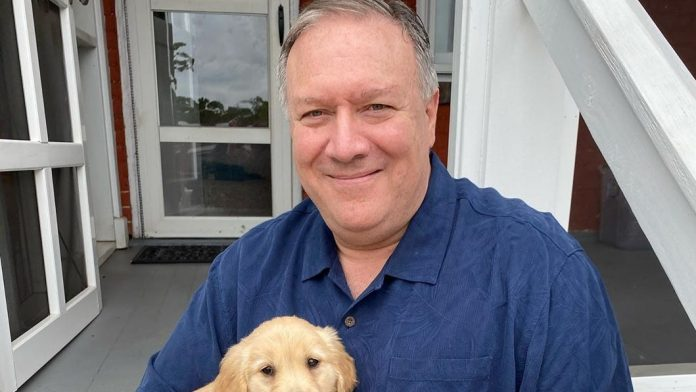 mike pompeo net worth